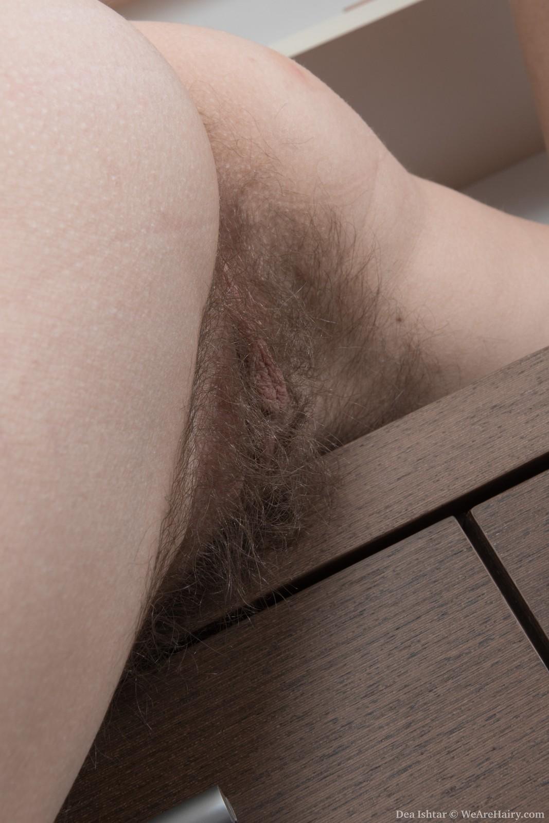 wpid-dea-ishtar-strips-and-shows-off-hairy-body12.jpg